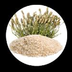 MinumanDetox.id - FibreFirst adalah suplemen serat dan nutrisi yang melancarkan pencernaan dan menjaga imunitas tubuh. Minuman diet sehat yang dapat dikonsumsi harian